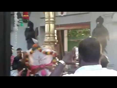 Vattavilai Tirupati Temple Brahmotsavam & Thirukalyana Utsavam Started Video