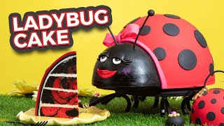 Ladybug CAKE! | Red & Black Marble Cake | How To Cake It