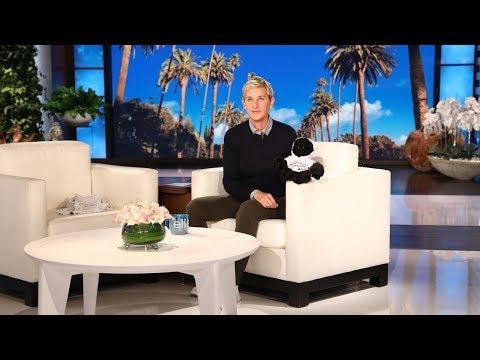 Ellen Wants to Go Fund the Gorillas