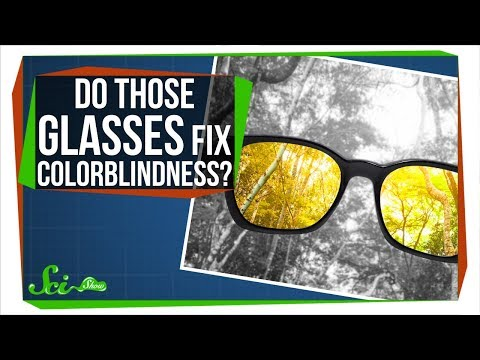 Do Those Glasses Really Fix Colorblindness? Mp3
