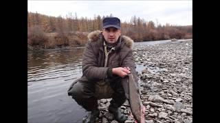 Рыбалка на хилке в забайкальском крае