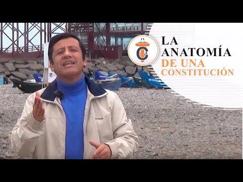 LA ANATOMÍA DE UNA CONSTITUCIÓN - Tribuna Constitucional 70 - Guido Aguila Grados