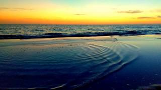 """Time by the Tidal Pool or a new Music Video for Jimmy Buffett's song  """"Coastal Confessions"""""""