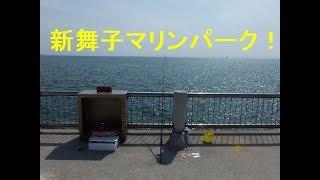愛知県知多市新舞子マリンパークちょい投げ海釣り魚は遅めの夏休みを取っていた。
