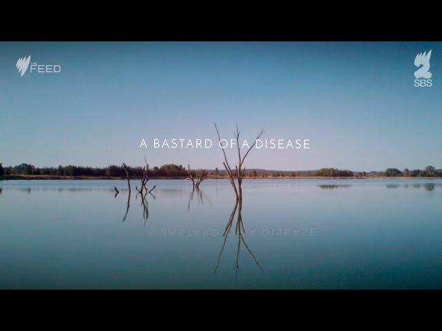 Video Pronunciation of Neale Daniher in English