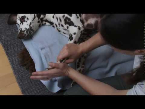Übungen für das Handgelenk nach dem Bruch