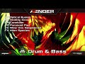 Video 1: Avenger Expansion Demo: Drum and Bass 1