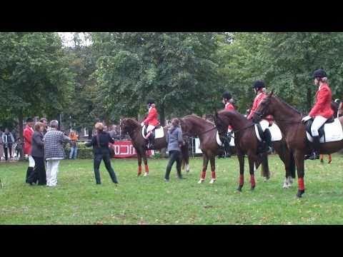Paardenfokdag 2010 - Huldiging 6 tallen CDE cat L en M