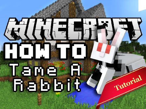 Minecraft How To: Tame & Breed Bunny Rabbits!