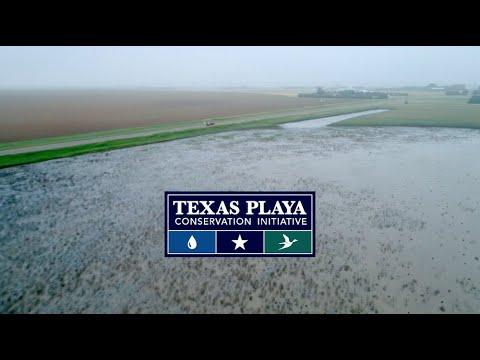 Texas Playa Conservation Initiative