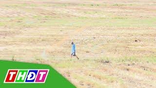 Cảnh báo nguy cơ sét đánh đối với người chăn vịt ngoài đồng trống | THDT