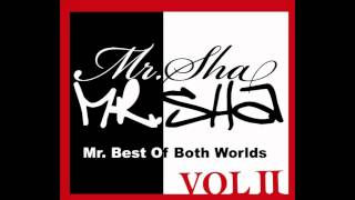 Swagger On A Million Ft Meek Millz, Mr Sha, ToniSteelz, Traffick, Perry H, A-Mon3y
