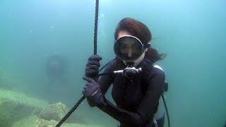 Marine Dive