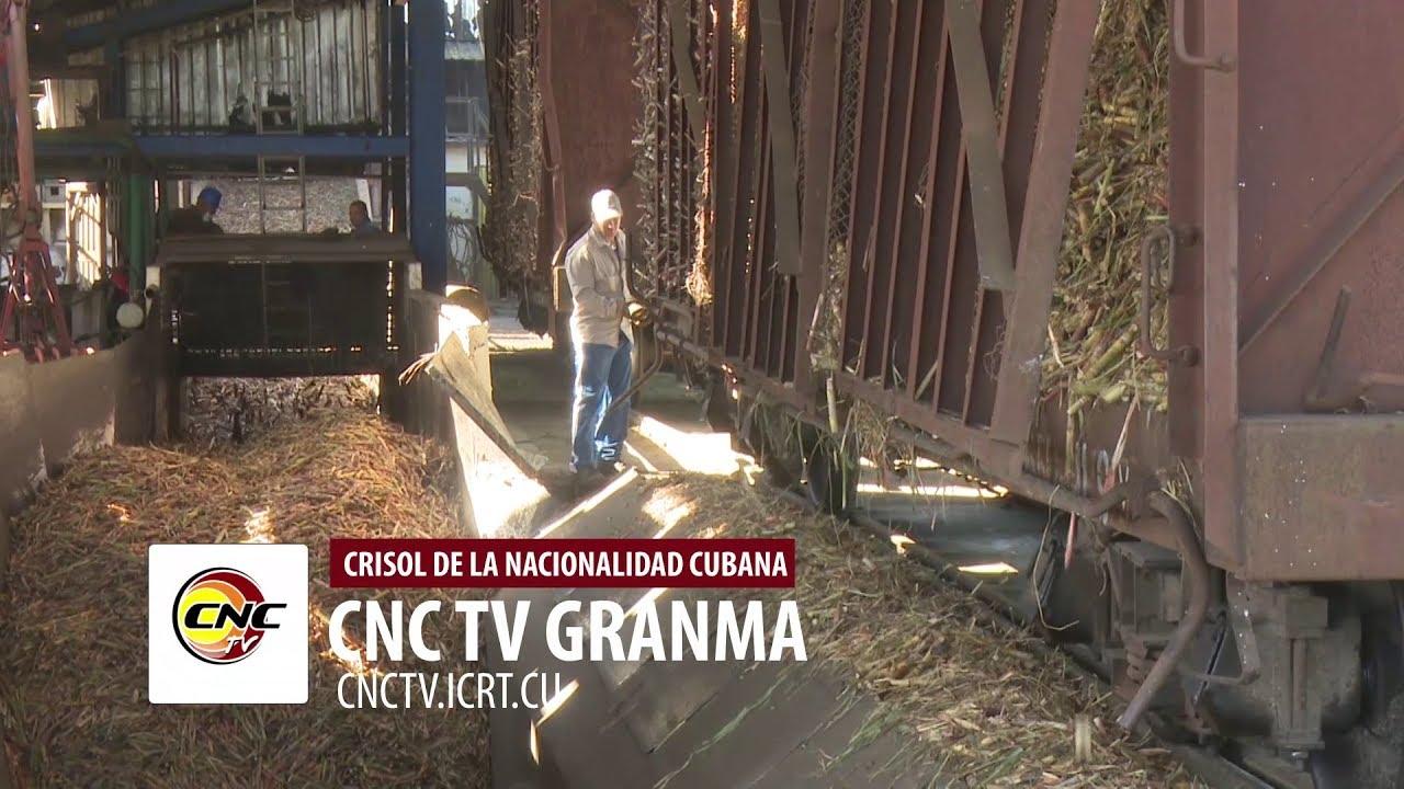 Avanza zafra azucarera en Granma pese a contratiempos
