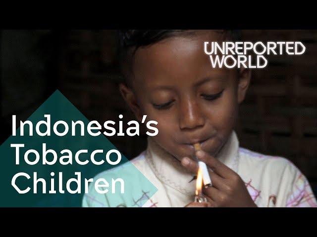 Indonesia's Tobacco Children | Unreported World