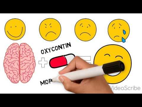 Opioid Addiction: Inside the Brain