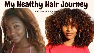 MY HEALTHY HAIR JOURNEY| Naturally.Endia