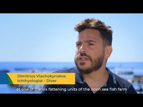 [;;;][;;;]Integration of Marine Renewable Energy Source(s) at Levantina Fish Feeding Platforms