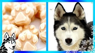 How to make HOMEMADE DIY FROSTY PAWS ABC NEWS | Snacks with the Snow Dogs 13