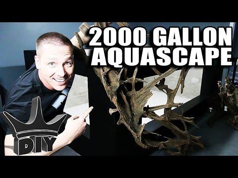 AQUASCAPING THE 2000 GALLON AQUARIUM LIVE!!!