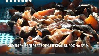 ИНЯ. Рыбопереработка в Хабаровском крае