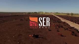 SER BEEF festeja 20 años de actividad