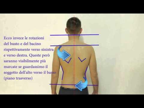 Video Massaggio in osteocondrosi del toracica