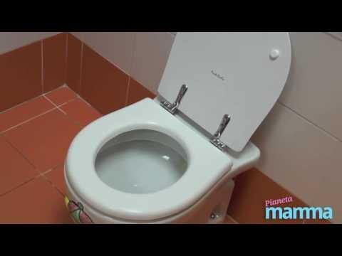 Esame di urina per parassiti