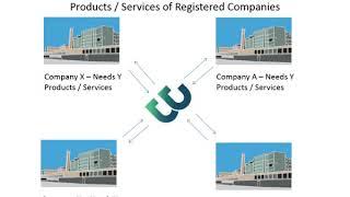 Business Web Company