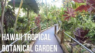 Hawaii Tropical Botanical Garden - Virtual Tour