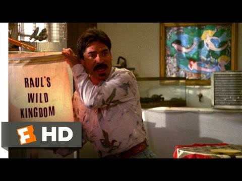 UHF (8/12) Movie CLIP - Teaching Poodles How to Fly (1989) HD