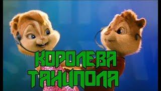 Бурундуки  Королева танцпола Джаро & Ханза