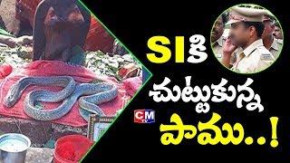 ఎస్సైని చుట్టేసిన పాముకు ఏమైంది? | Durgada snake without food for 25 days | CM TV News