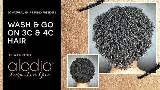 Wash & Go on 3C/4C Hair Ft. Alodia Haircare
