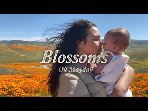 "Ok Mayday - ""Blossoms"""