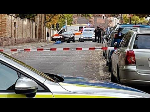 العرب اليوم - شاهد: الشرطة الألمانية تعتقل مشتبهًا به بعد واقعة إطلاق نار بأحد شوارع