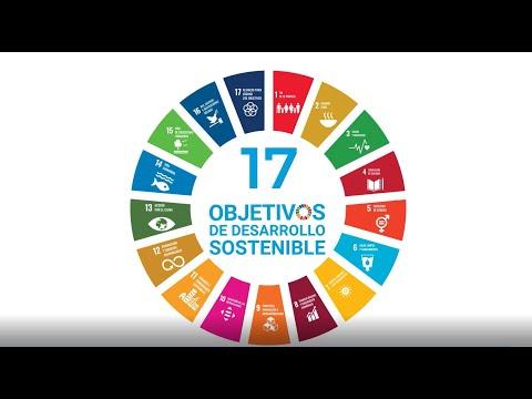 Una década de acción para cumplir con los ODS