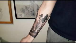 Descargar Mp3 De Tatuaje Bosque De Pinos Gratis Buentemaorg