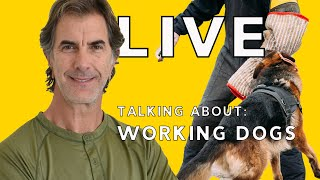LIVE Talking About Working Dogs - Training and Living with High Drive Dogs