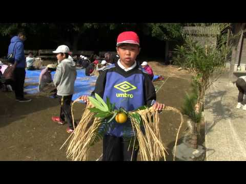 種子島の学校活動:上西小学校正月用しめ縄つくり学習体験2016年