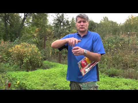 Вакуумное консервирование свежих и хранение сухиıх продуктов