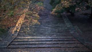 奈良 日本が始まった場所