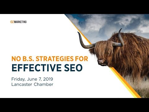 No B.S. Strategies for Effective SEO
