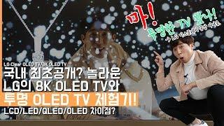 국내 최초공개? 노올라운 LG의 투명 OLED TV/8K OLED TV 체험기! LG 디스플레이 공장을 가보았다.(LG Clear OLED TV)