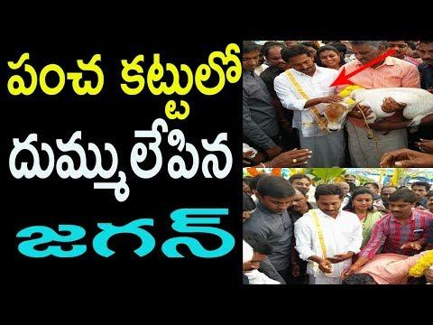 పంచ కట్టులో దుమ్ములేపిన జగన్ YS Jagan, MLA Roja celebrate Sankranthi |Cinema Politics