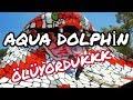 Aqua Dolphin Bahçeşehir İstanbul Kobrada ölüyorduk