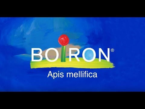 Boiron, Single Remedies, Apis Mellifica, 30C, Approx 80 Pellets