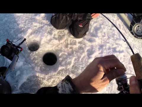 Crappie Fishing Reelfoot Lake, March 30, 2014   Fishing Fanatic