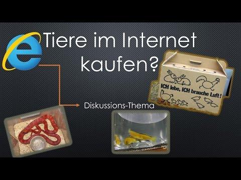 Tiere im Internet kaufen?   Wissen