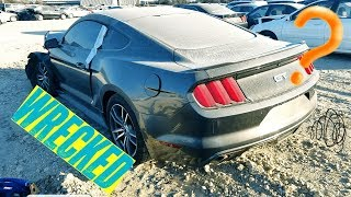 Searching thru COPART for more MUSTANGS!